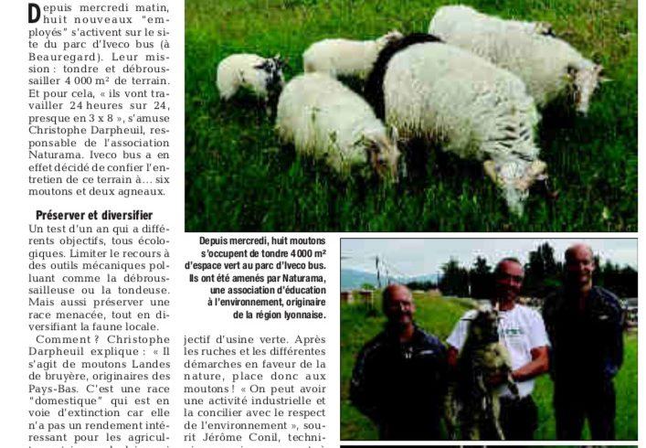 Iveco Bus à Annonay choisit l'éco-pâturage