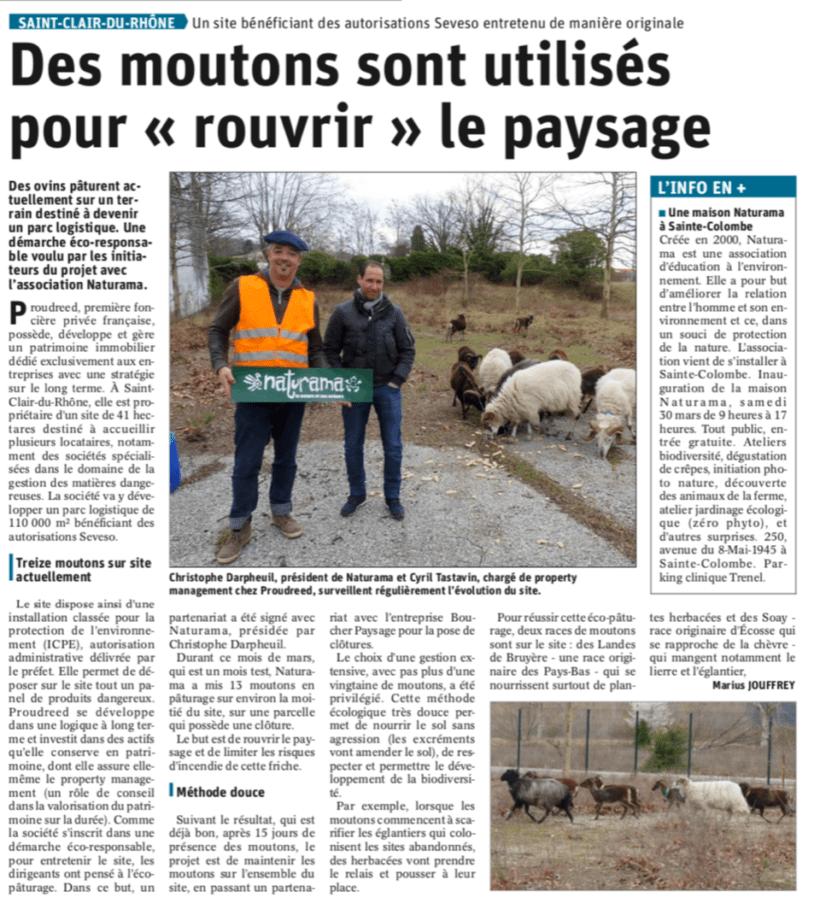 Rouvrir le paysage avec les moutons