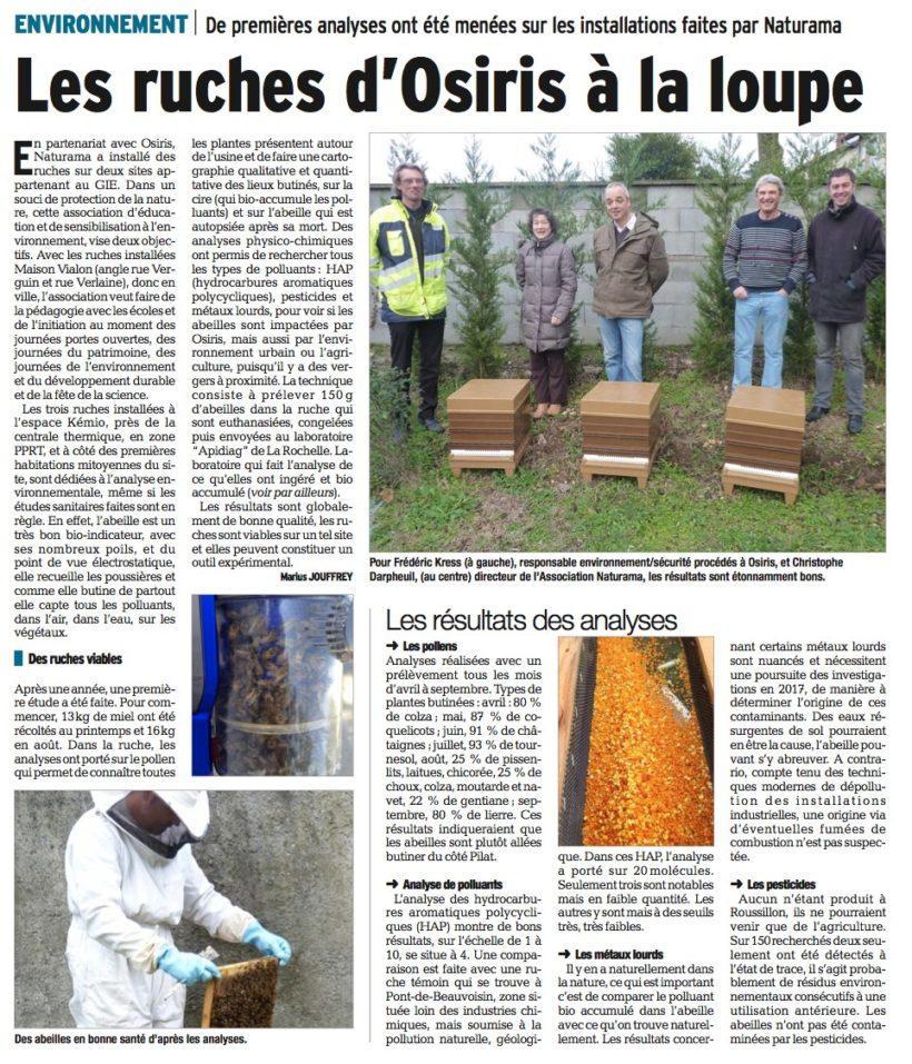 Les ruches d'Osiris à la loupe